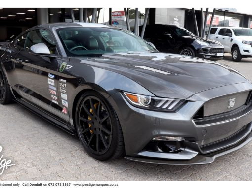 Shelby Ford Mustang Terlingua Racing Team Edition